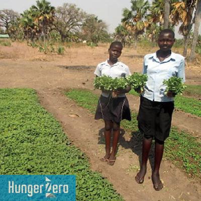 南スーダンマブイスクール菜園.jpg