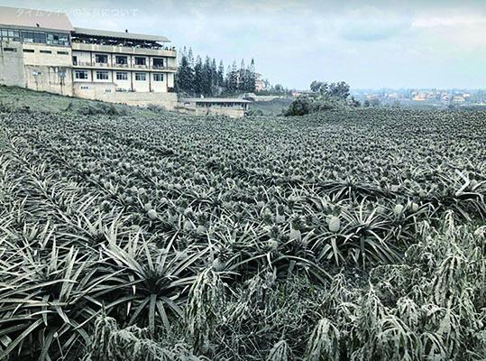 フィリピン火山被害.jpg
